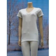 Entex dames shirt korte mouw 10% wol